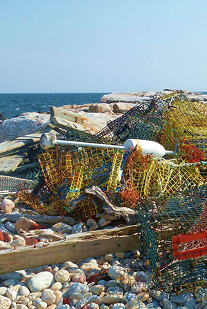 Traps and debris on a beach.