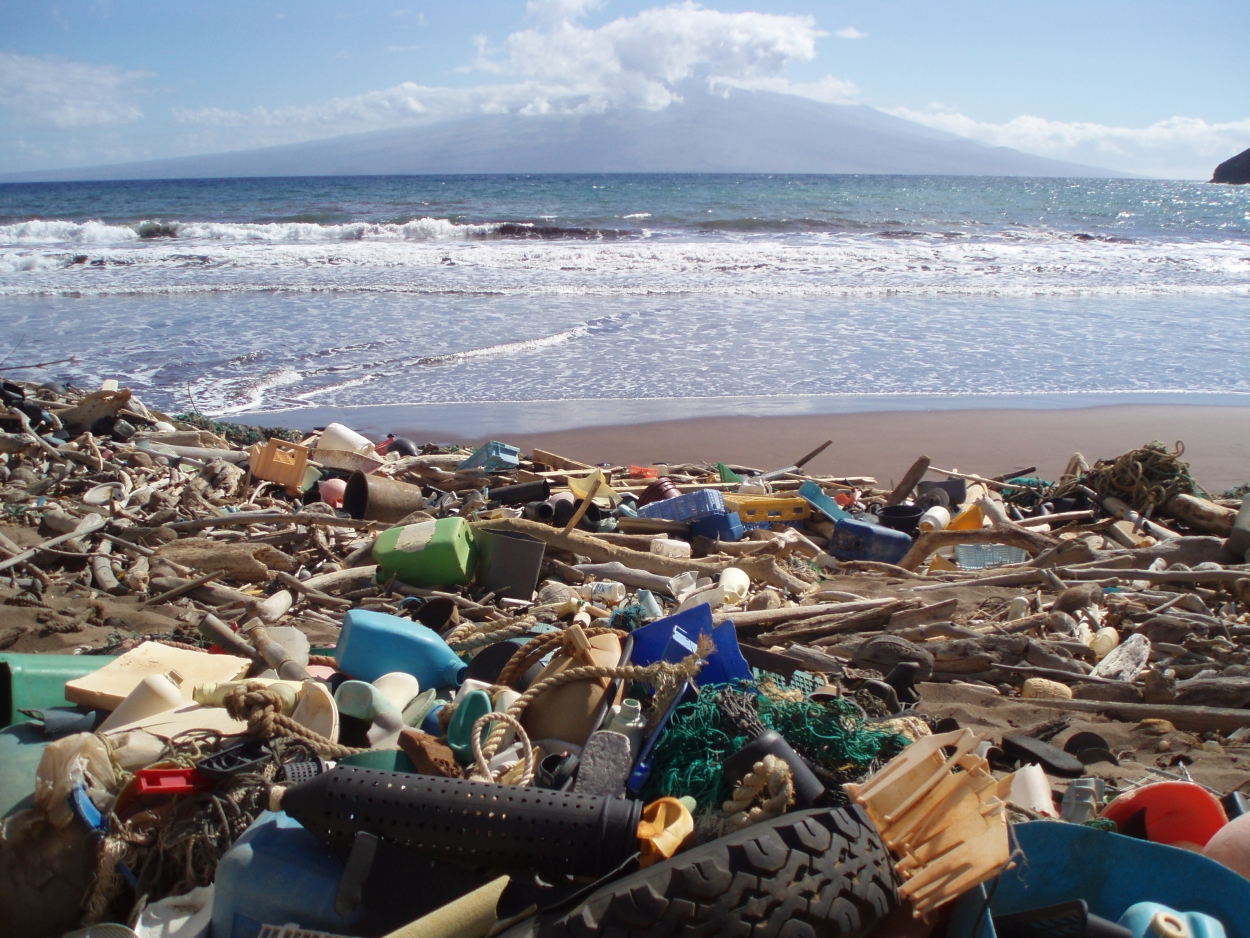 Image result for marine debris