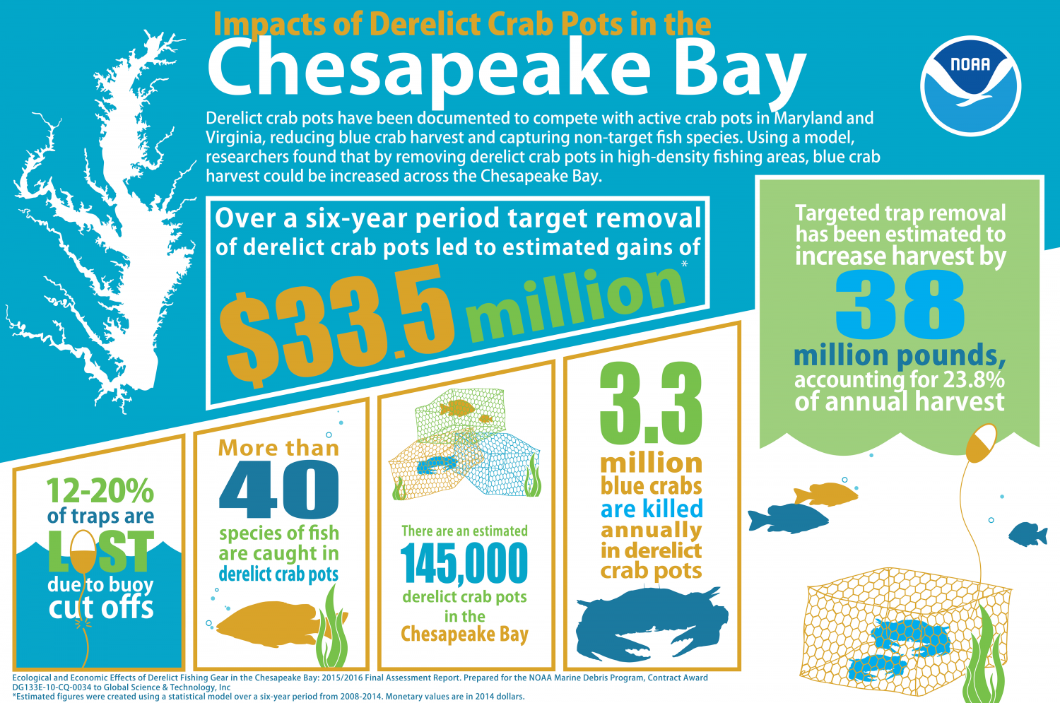 Infographic Of The Results From Effects Derelict Fishing Gear In Chesapeake Bay Assessment
