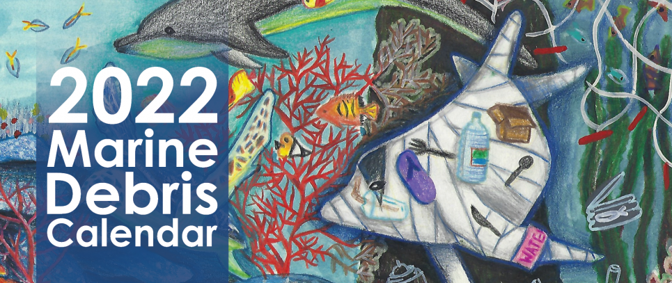 Student artwork features sea creatures swimming through a coral reef away from a derelict net, accompanied by a dolphin filled with marine debris.
