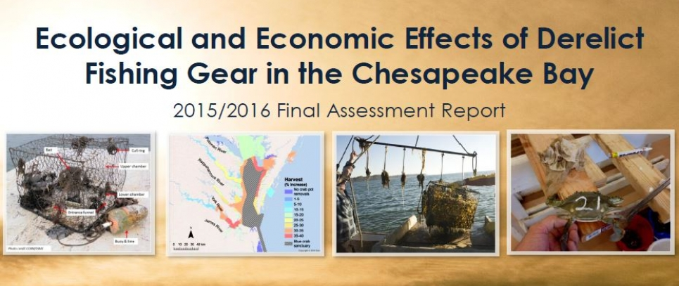 Cover of the Effects of Derelict Fishing Gear in the Chesapeake Bay Assessment Report.