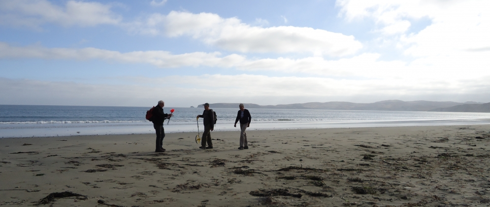Three people surveying a beach for marine debris.