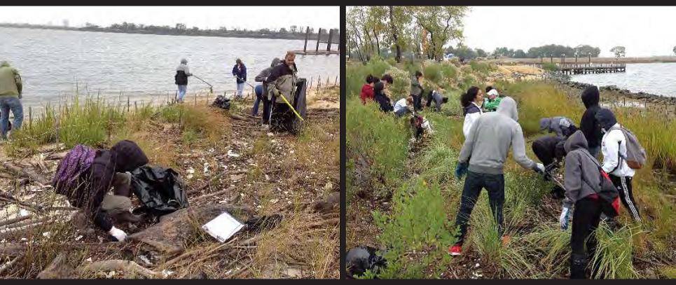 Community volunteers clean up a local shoreline. (Photo Credit: National Aquarium)