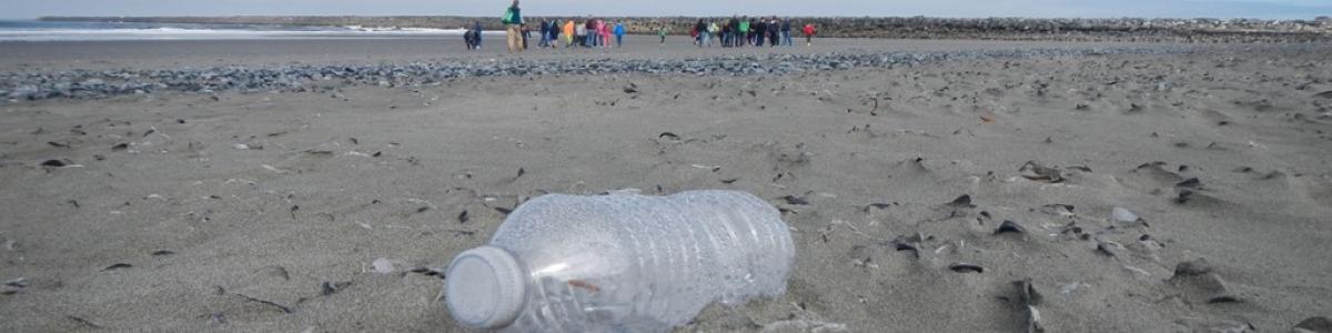 Japan Tsunami Marine Debris