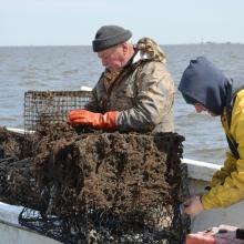 Fishermen remove derelict crab traps.