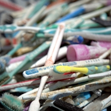 A pile of plastic toothbrush debris.