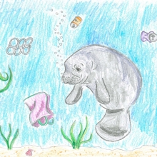 Artwork by Shannon T. (Grade 6, Florida)