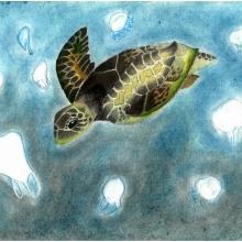 Artwork by Sophie W. (Grade 8, Michigan), winner of the 2021 Annual NOAA Marine Debris Program Art Contest