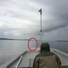 SCDNR staff strike a float to test durability.