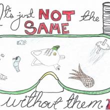 Artwork by Elizabeth S. (Grade 8, Virginia)
