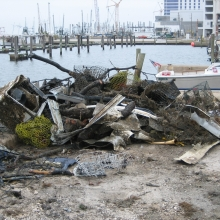 Debris from Hurricanes Katrina and Rita in the Gulf of Mexico Region