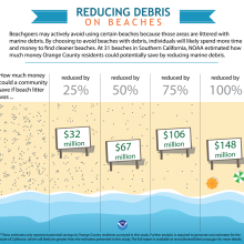 Marine Debris Economic Study Infographic.