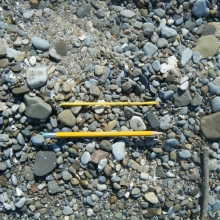 Plastic juice straw found on the shore of the Great Lakes. The pencil was staged for scale.
