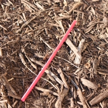 Plastic straw found along East-West Highway, Silver Spring, MD.