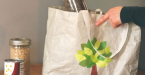 Groceries and a reusable cloth grocery bag.