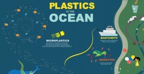 Plastics in the Ocean Infographic.