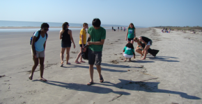 Kids on the beach are picking up debris.
