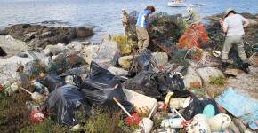 Pile of marine debris on a shore.