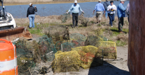 Volunteers picking up derelict crab pots.
