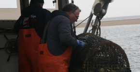 Lobstermen pulling a derelict trap out of the water.