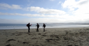 Three people surveying a beach for marine debris.