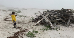 Child looking at hurricane debris on the beach.