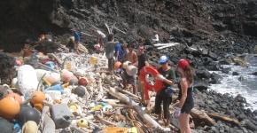 KIRC volunteers cleaning the beach.