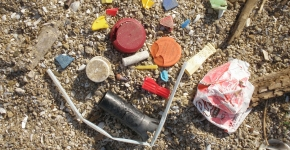 Various marine debris items on a beach.