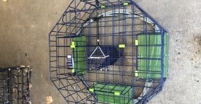 A top down view of a crab pot with three green panels that will dissolve over time.