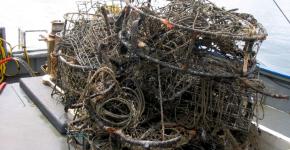 Derelict crab pots.