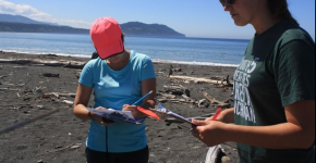 Two people recording on datasheets on a beach.