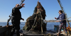 A large mass of derelict fishing gear getting hauled onto a vessel.