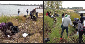 Community volunteers clean up a local shoreline. (Photo Credit: National Aquarium)