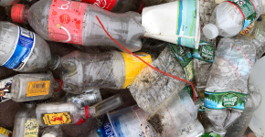 A pile of different single-use plastic bottles.