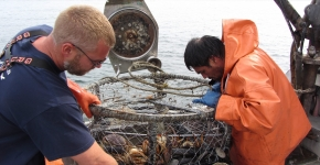 Two people handle a derelict crab pot on a boat.