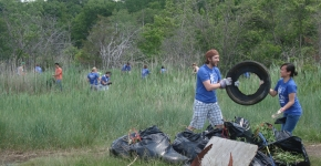 Salem Sound Coastwatch Cleanup.