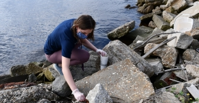 A student collecting debris on a rocky shore.