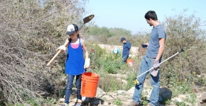 Volunteers remove debris and invasive species from a riparian area of the Tijuana River Valley.