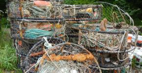 A pile of derelict crab pots.
