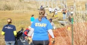 Volunteers remove debris from Long Beach's salt marsh in NY.