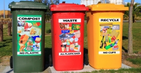 A green compost bin next to a red waste bin and a yellow recycle bin.