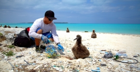 A person removing debris near a large chick on the beach.