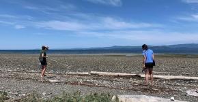 Volunteers survey for marine debris on a beach.