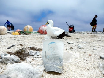 A coffee cup found on the remote Northwestern Hawaiian Islands. (Photo Credit: NOAA)