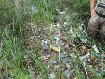 Plastic debris littering a marsh. (Photo Credit: Dauphin Island Sea Lab)