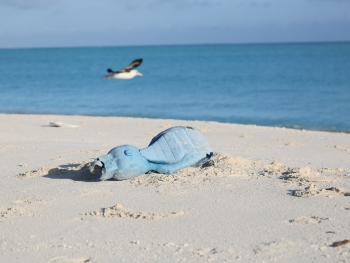 A toy motorcycle washed up on the sandy shores of North Beach, Sand Island, Midway Atoll.