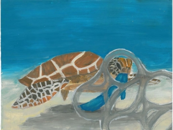 Painting of a turtle with debris.