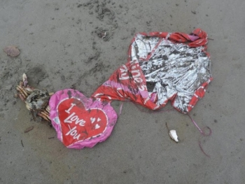 Mylar balloons on the beach, found at the Long Beach Peninsula.
