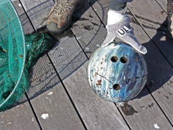 Bowling Debris