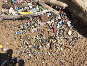 Microplastics found on a Lake Ontario beach.